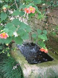 european gardening