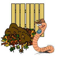 earth worm compost