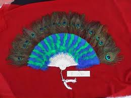 peacock feathers crafts