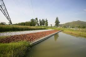 sedimentation ponds