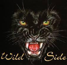 panther design