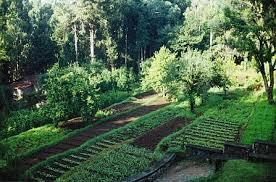 best vegetable gardens
