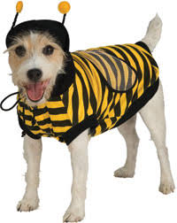bee dog costumes
