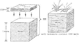 moisture soil