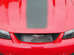 mustang grille delete