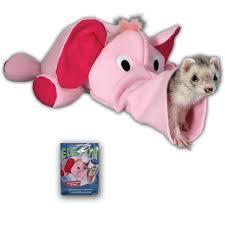 fun ferret toy
