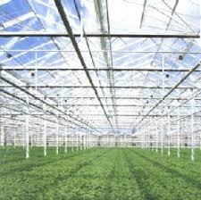 greenhouse farms