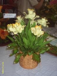 porcelana fria flores