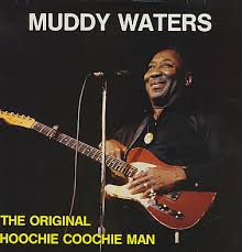 muddy waters hoochie