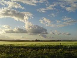 canadian farmland