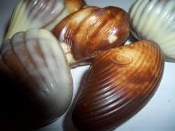guylian sea shell