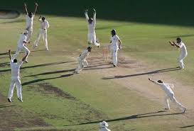 picture of cricket players