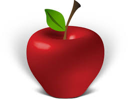 apple illustrator