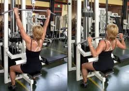 back muscle workouts