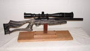 10 22 gun