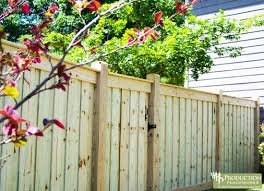 privacy fence design