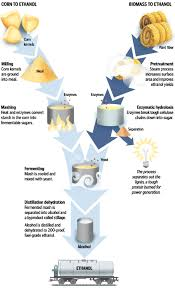 biomass energy production