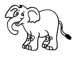 color elephants