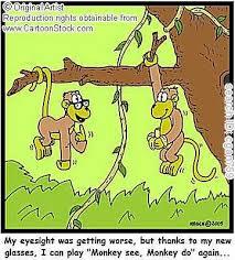 kids monkeys