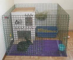 house rabbit cages