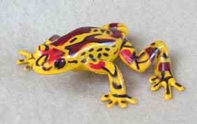 red poison dart frogs
