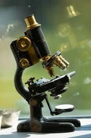 microbiology microscope