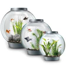 bi orb fish tanks