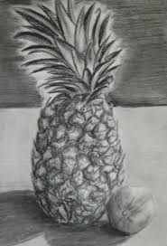 drawing of pineapple