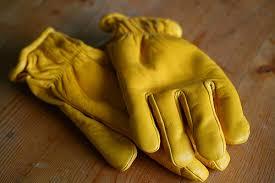 goatskin glove