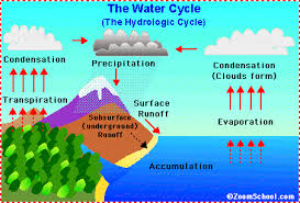 the water cycle picture