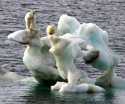 climate of arctic