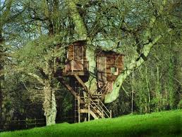 how to build a tree houses