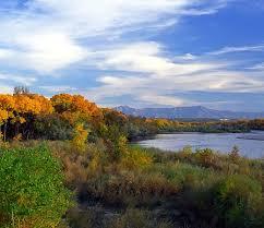 rio grande albuquerque