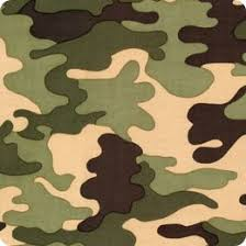 camouflage colors