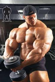 pictures of muscles