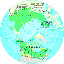 map of the boreal forest
