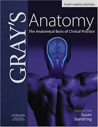 anatomy textbook