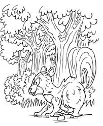 forest colouring page