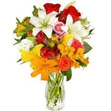 flores imagenes