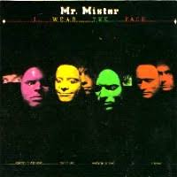 mr mister i wear the face