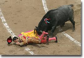 bullfights pictures