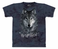 gray wolfes