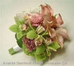mini cymbidium orchids