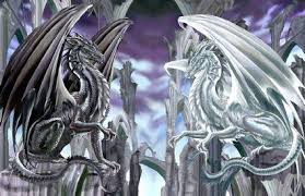 dragon black and white