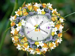 all white flower