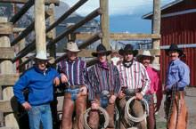 horse cowboys