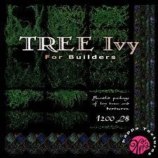 ivy trees