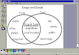 labeled diagram of a frog