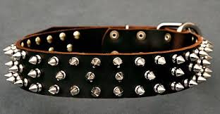 dog spike collars