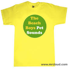beach boy shirts